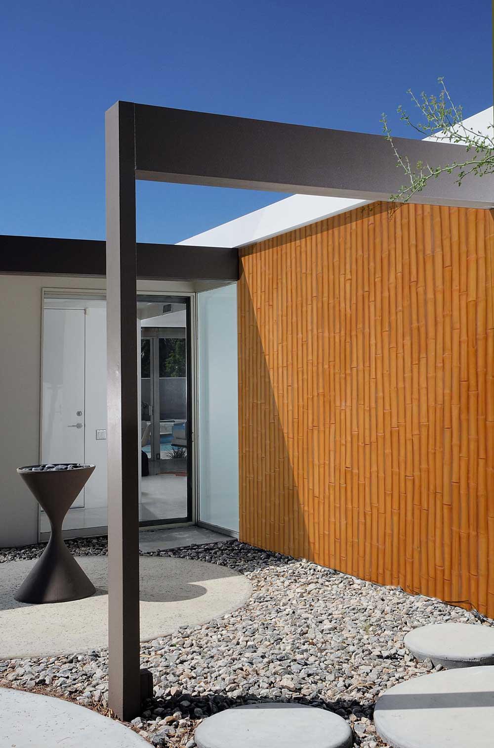 Bambú Decorativo Seco